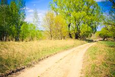 Free Rural Road Among A Green Forest Royalty Free Stock Photo - 22431325