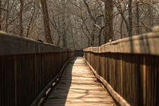 Free Boardwalk Through Nature Stock Image - 22432701
