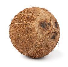 Free Single Coconut Royalty Free Stock Photo - 22432735