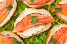 Free Salmon Sandwich Stock Images - 22432804