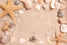 Seashell Frame Stock Image