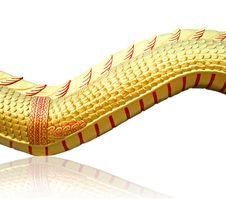 Free Dragon Skin Stock Photo - 22445840