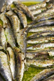 Free Baked Sardines Royalty Free Stock Images - 22447129