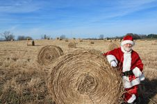 Free Reindeer Food Stock Photography - 22448472