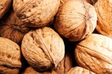 Free Walnuts Stock Photos - 22455333