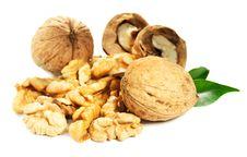 Free Walnuts Stock Photography - 22455352