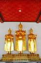 Free Three Buddha Image In Thailand Stock Photos - 22464713