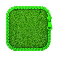 Free Zipped Grass Royalty Free Stock Photography - 22460087