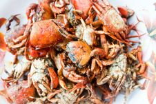 Free Crab Stock Images - 22462244