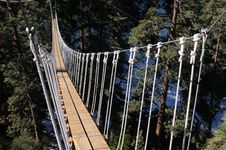 Free Suspension Bridge In Wrightwood CA Royalty Free Stock Image - 22464306