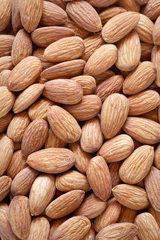 Free Almonds Stock Image - 22474181