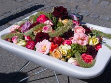 Street Decoration Flowers In A Sink