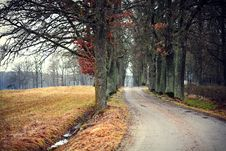 Free Autumn Road Stock Photos - 22476773