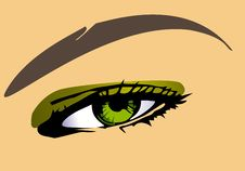 Free Green Eye Stock Images - 22479184