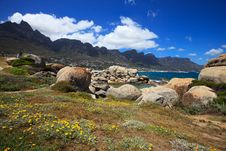 Free View To The Camps Bay And Mountains Royalty Free Stock Photography - 22488317