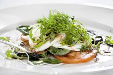 Free Tomato And Mozzarella With Green Salad Stock Photo - 22491420