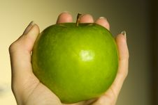 Hand Holding Apple Stock Photography
