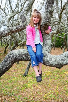 Girl In A Mangrove Tree Stock Photo