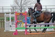 Free Horse Riding Royalty Free Stock Photo - 2252435
