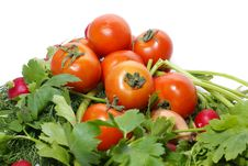 Free Tomatoes And Parsley Royalty Free Stock Photography - 2253847