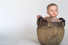 Free Basket Baby Royalty Free Stock Photos - 2253938