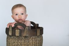 Free Basket Baby Stock Photography - 2253962