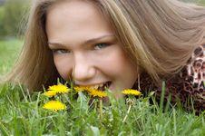 Free Pretty Girl Bites Dandelion Stock Photography - 2258762