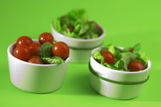 Free Tomato With Salad Stock Photo - 2259780