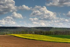 Agricultural Scene Stock Photography