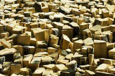 Free Wooden Log 2 Stock Photo - 22506120