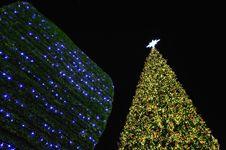 Free Big Christmas Tree In Bangkok. Stock Photography - 22514172
