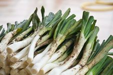 Free Calçots Royalty Free Stock Photography - 22516157