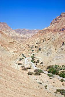 Free Desert Landscape Stock Photos - 22518543