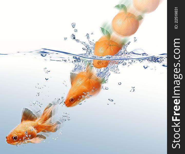 Mandarin splashing into water and transforming.