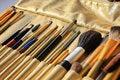 Free Make Up Brushes Royalty Free Stock Images - 22524019