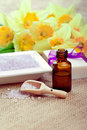 Free Bath Salt With Soap And Essential Oil Royalty Free Stock Photos - 22525768