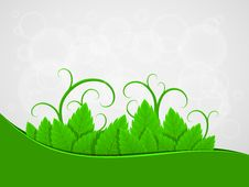 Free Background With Green Leaves Stock Image - 22523491