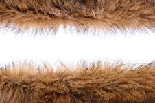 Free Fluffy Wool Texture Stock Photos - 22528093