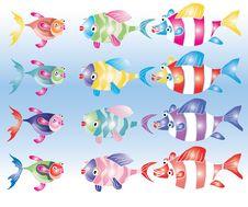 Fish Kit Royalty Free Stock Photo