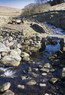 Free Clapper Bridge On Dartmoor Bridge National Park Royalty Free Stock Images - 22542949