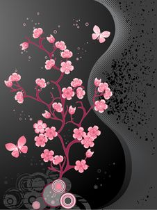 Free Blossoming Cherry Tree Stock Images - 22543434