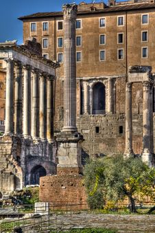 Free Forum Romanum, Rome Royalty Free Stock Photography - 22544947