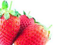 Free Strawberry Stock Photos - 22545303