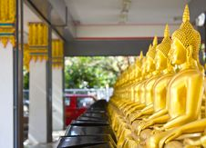 Free Buddha Sort Rows. Stock Photo - 22549010