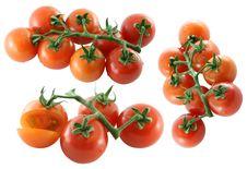 Free Fresh Cherry Tomato On White Background Royalty Free Stock Images - 22551349