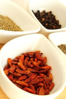 Free Spices Royalty Free Stock Photo - 22553315