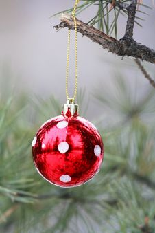 Free Outdoor Ornament Stock Image - 22559511