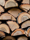 Free Pile Of Firewood Background Royalty Free Stock Photos - 22569468