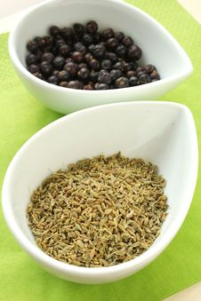 Anise And Juniper Royalty Free Stock Photos