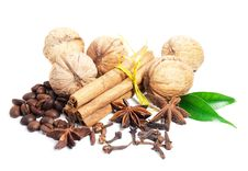 Cinnamon, Anise,  Walnuts And Cloves Royalty Free Stock Image